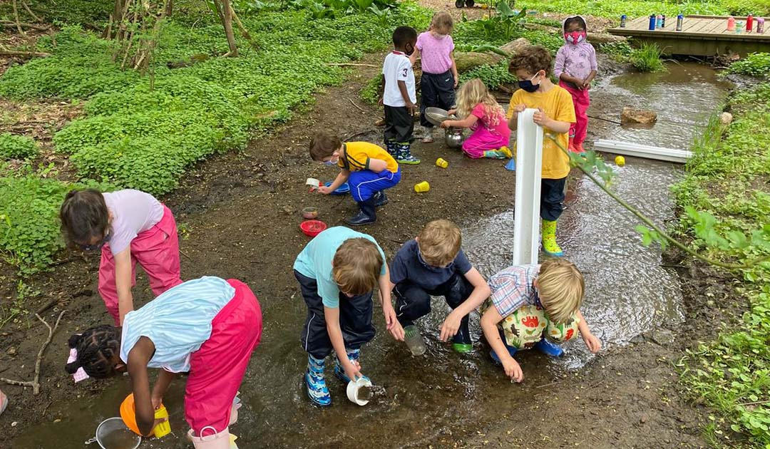 3 Activities to Help Your Child Engage With Nature